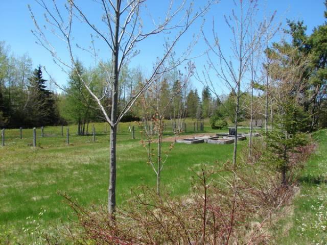Maple Green, New Brunswick