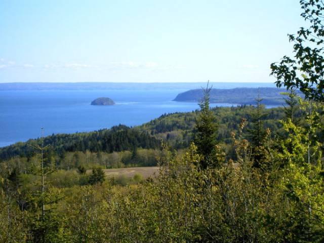 Fraserville Nova Scotia B0m1s0 Listing 19088 Green