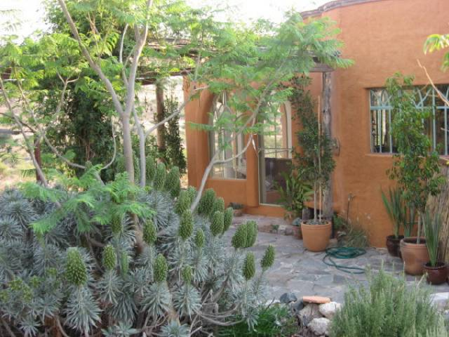 Green Homes for Sale - San Miguel de Allende, None Green Home