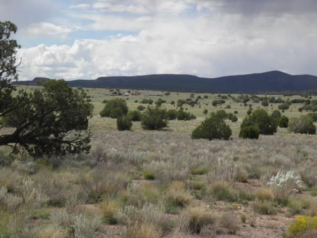 Ash Fork Arizona 86320 Listing 19289 Green Homes For Sale