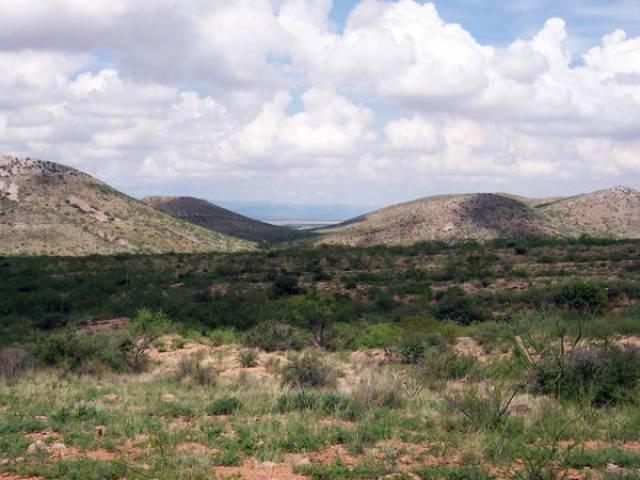 Douglas (AZ) United States  city photos : Douglas, Arizona 85607 Listing #17992 — Green Homes For Sale