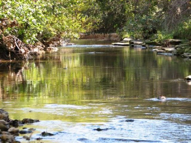 Berryville Arkansas 72616 Listing 17792 Green Homes