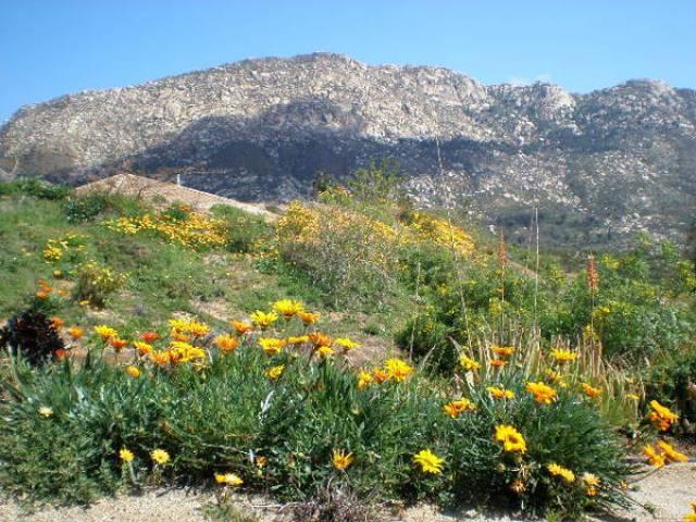 Valley Center California 92082 Listing 18880 Green