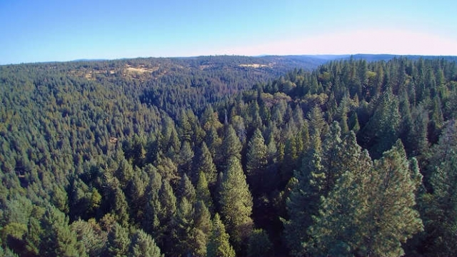 Green Homes for Sale - Volcano, California Green Home