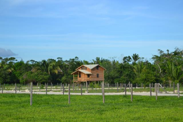 Green Homes for Sale - Cayo, Florida Green Home