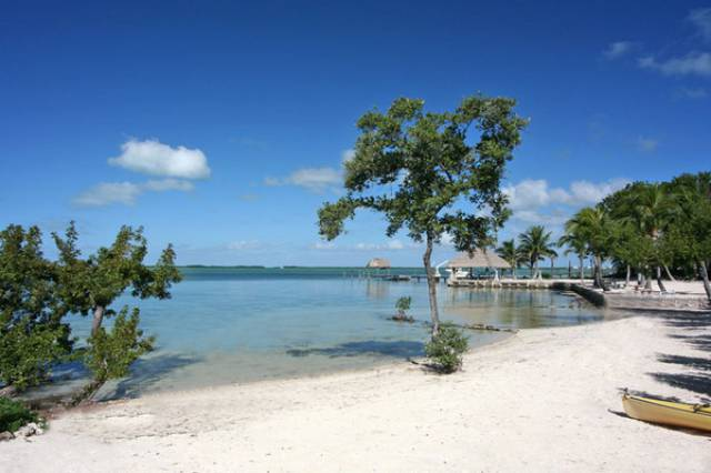 Green Homes for Sale - Key Largo, Florida Green Home