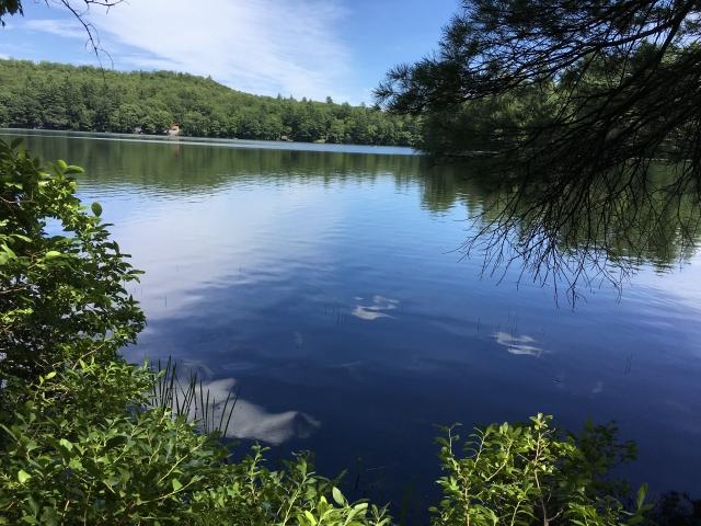 Mercer Maine 04957 Listing 20289 Green Homes For Sale